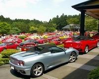 Parkeerproblemen (100 Ferrari's bij elkaar)?